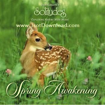 Dan Gibson - Spring Awakening