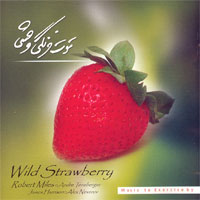 Robert Miles - Wild Strawberry