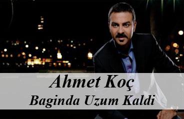 Ahmet Koç - Baginda Uzum Kaldi
