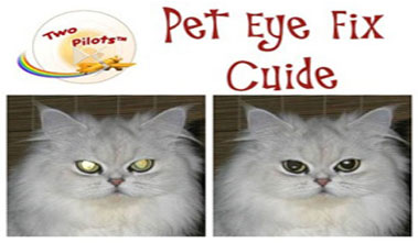 Pet Eye Fix Guide