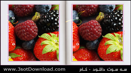 Find 10 Differences PC Game