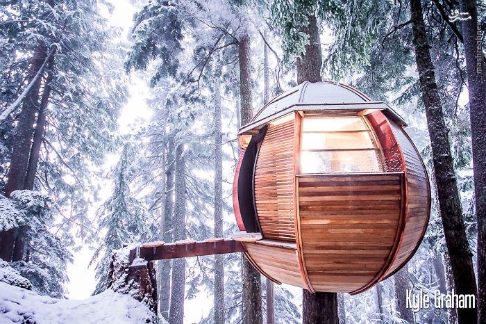 کلبه های درختی رویایی